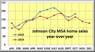 Johnson City MSA